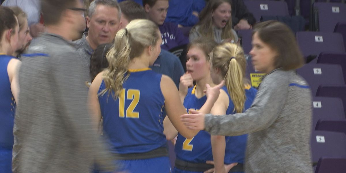 Waseca advances to Section 2AA title game