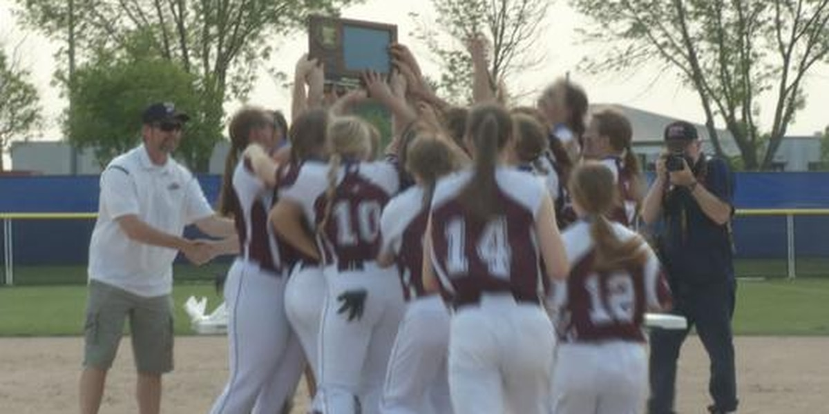 New Ulm Cathedral heading to State Tournament