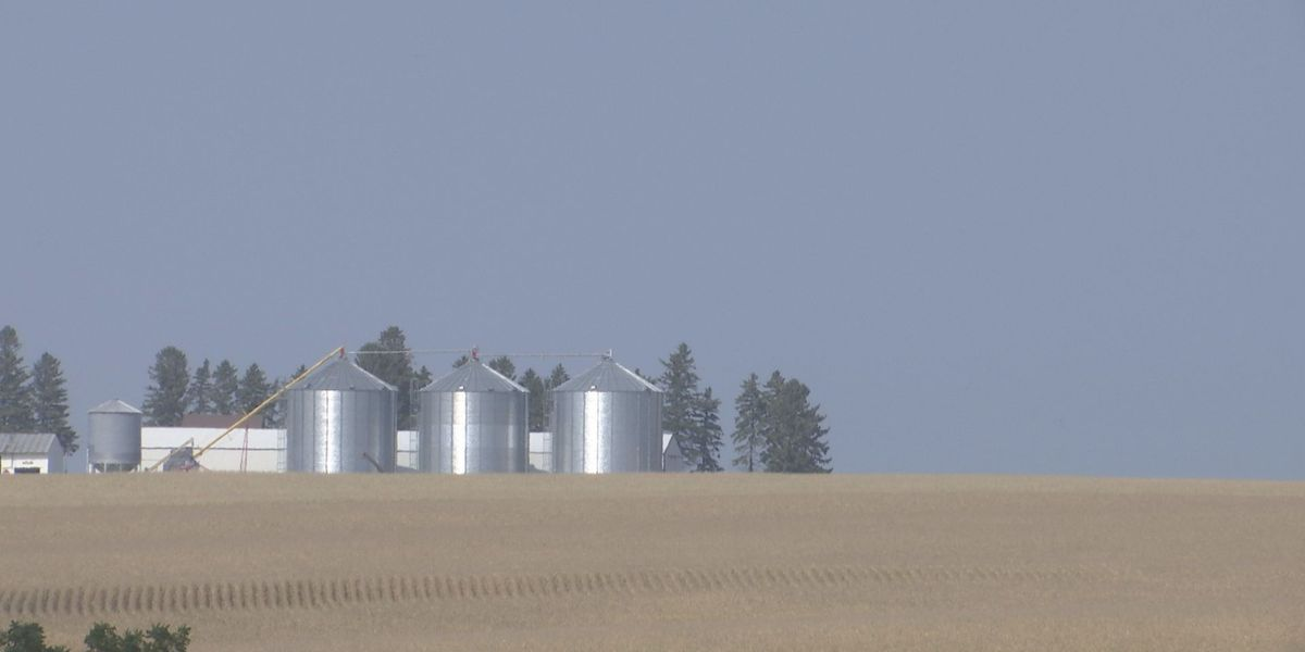 Stressing grain bin safety during National Farm Safety and Health Week