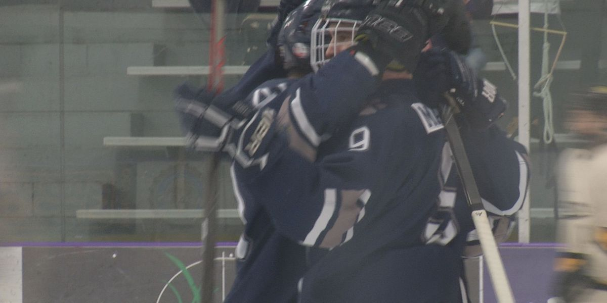 Cougars fall to Rochester Century