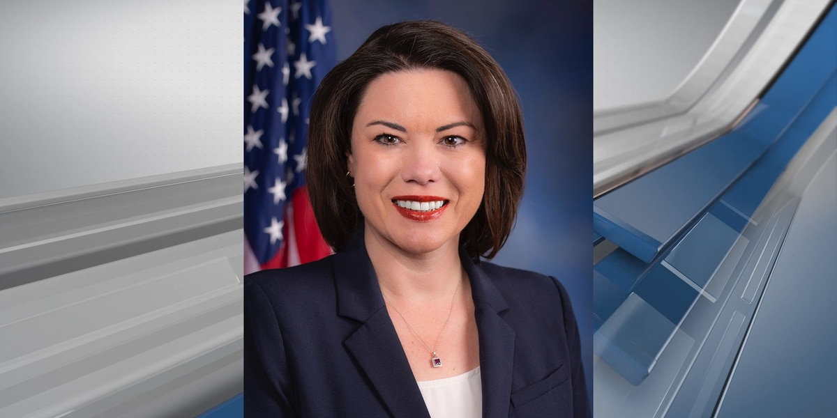 Angie Craig sues for November election