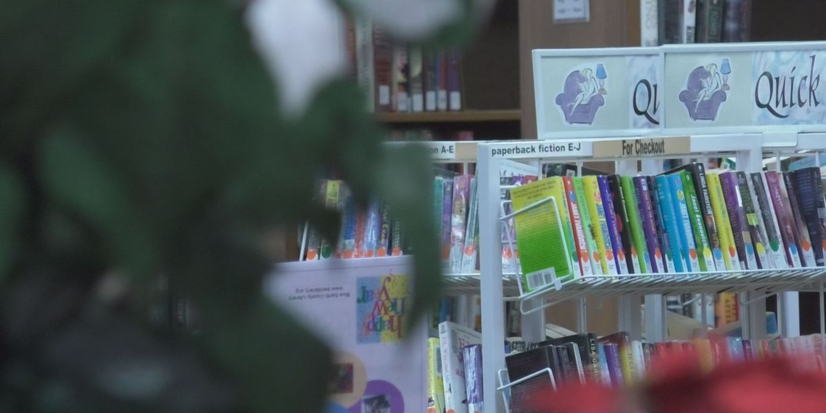 Blue Earth County Library's summer reading program goes virtual