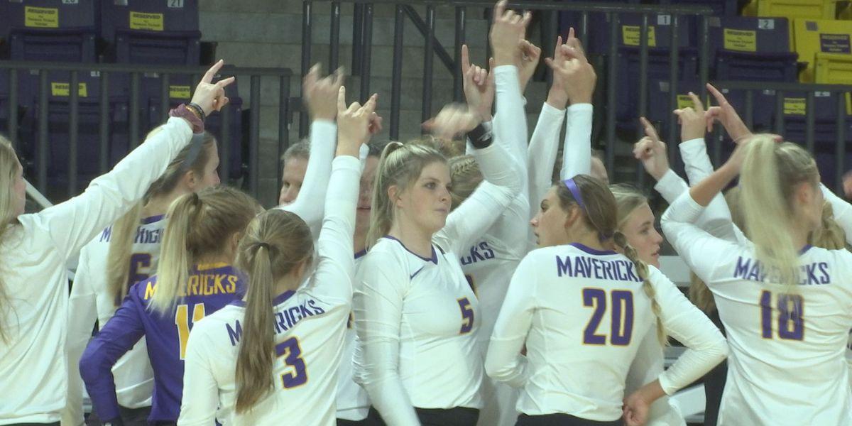 MSU volleyball sweeps ranked USF