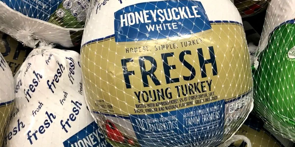 Financial aid available for turkey producers in Minnesota through CARES Act funds
