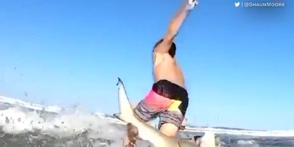 WATCH: Shark knocks 7-year-old surfer off his board