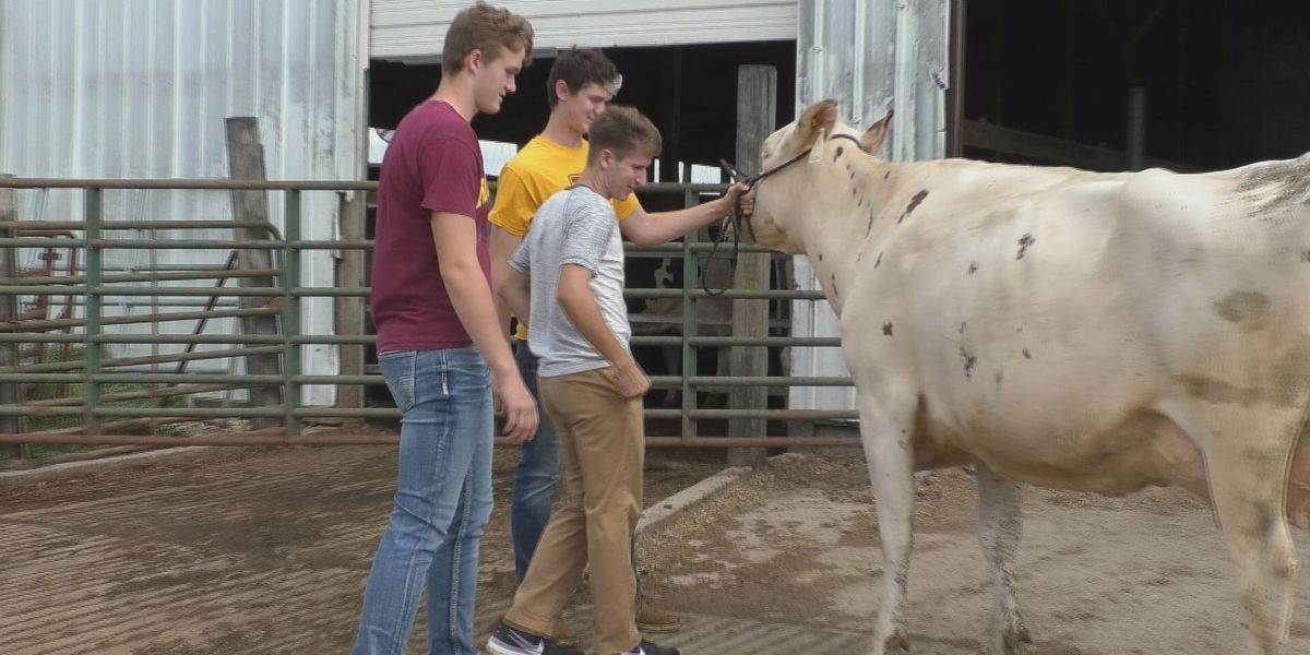 Local Dairy Judge Team Wins State