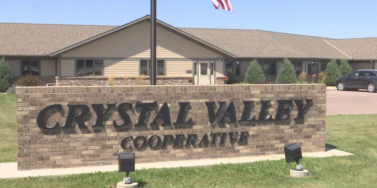 Little Lakers Learning Center will move into Crystal Valley Cooperative