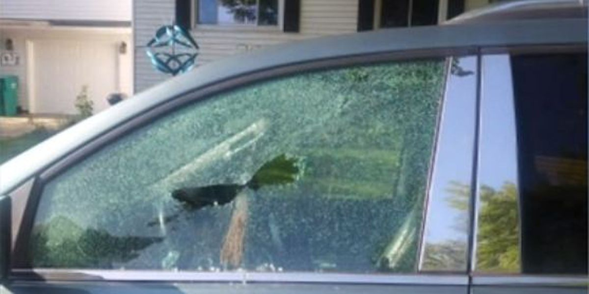 Waseca Police searching for vandals who shot out multiple car windows