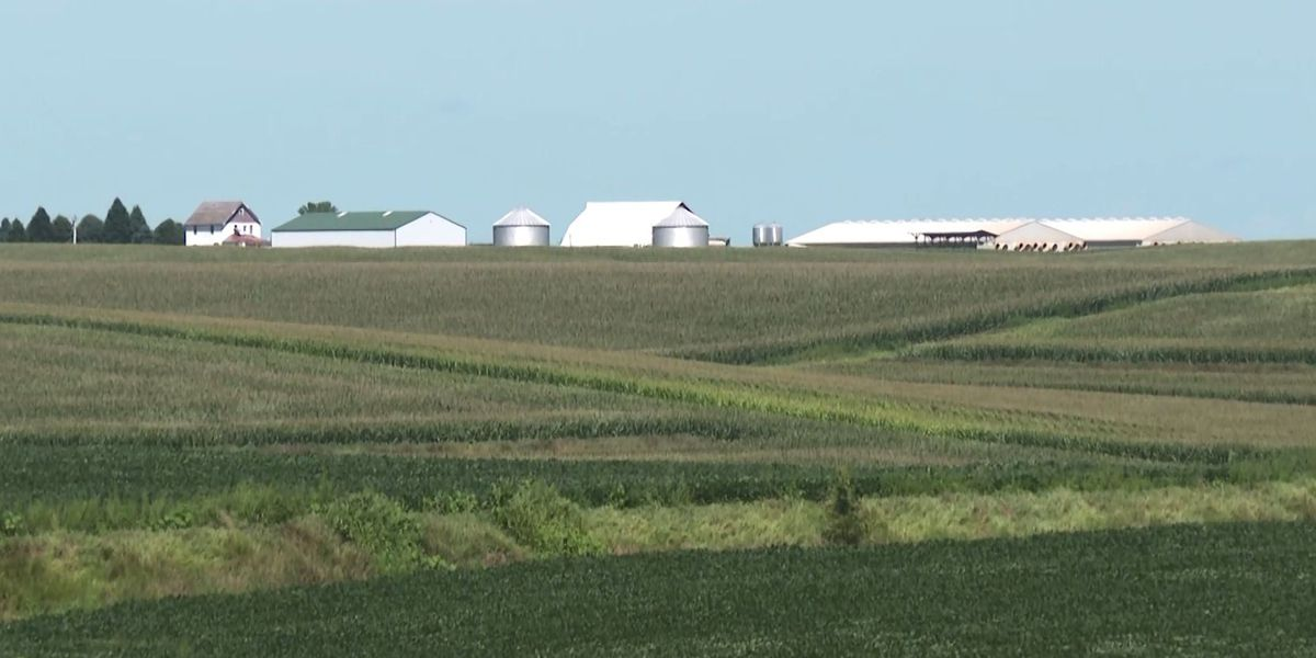 Iowa average farmland value increases 1.7% in past year