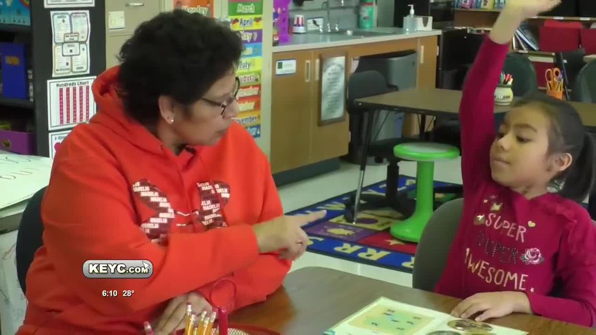 Madelia paraprofessional, interpreter awarded Golden Apple
