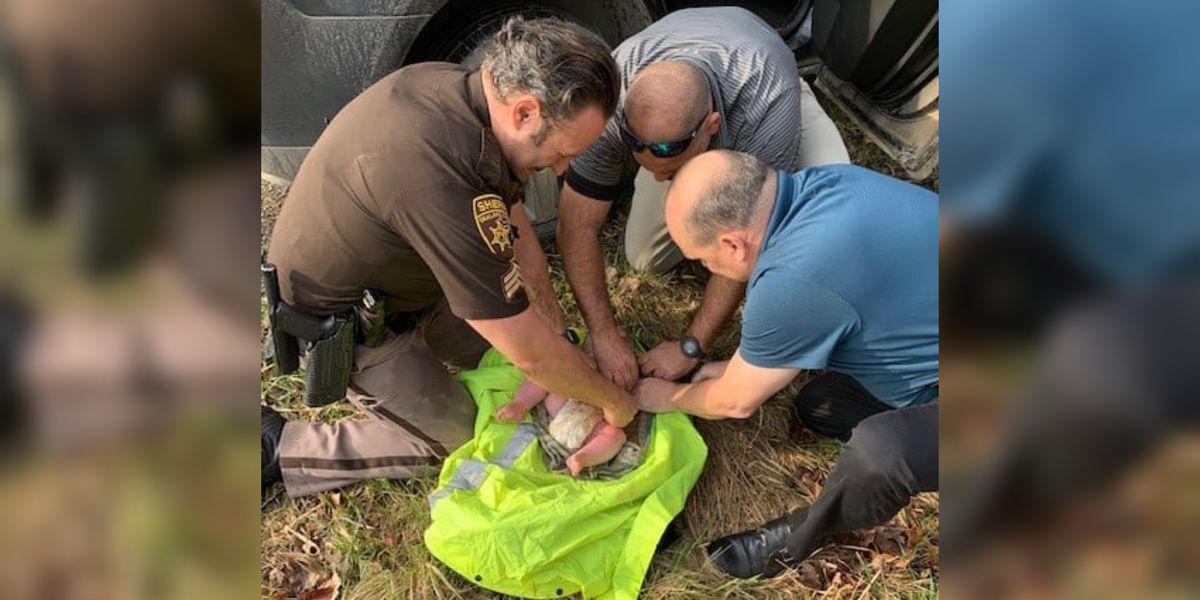 Deputies: Abandoned newborn found on banks of Michigan creek