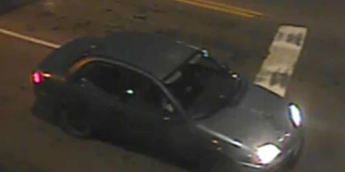 Authorities searching for hit-and-run suspect