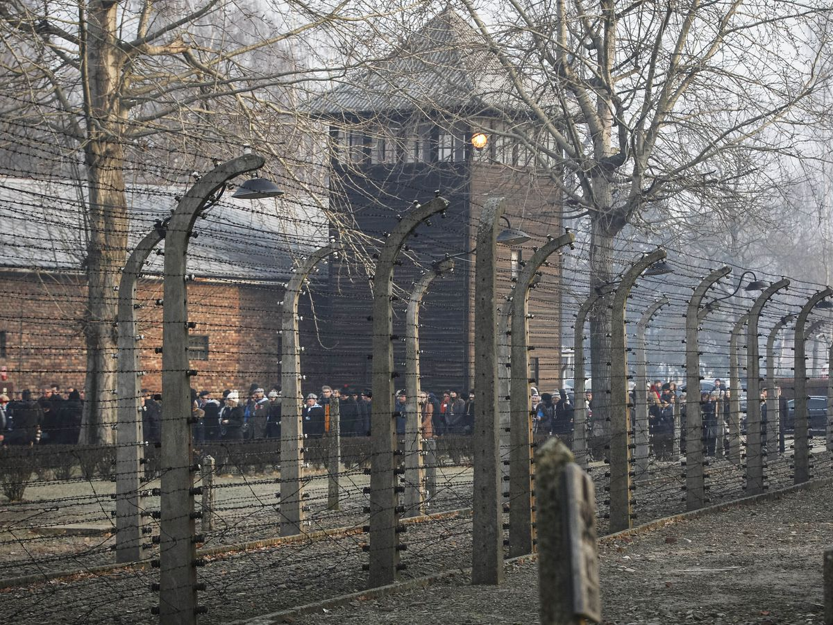 TripAdvisor removes insensitive review of Auschwitz Museum