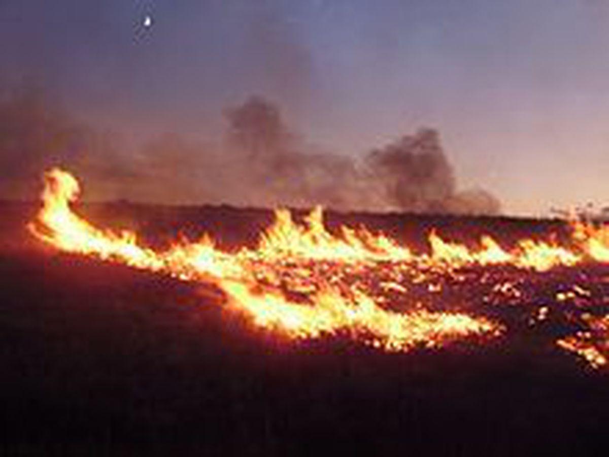 DNR warns of high fire danger
