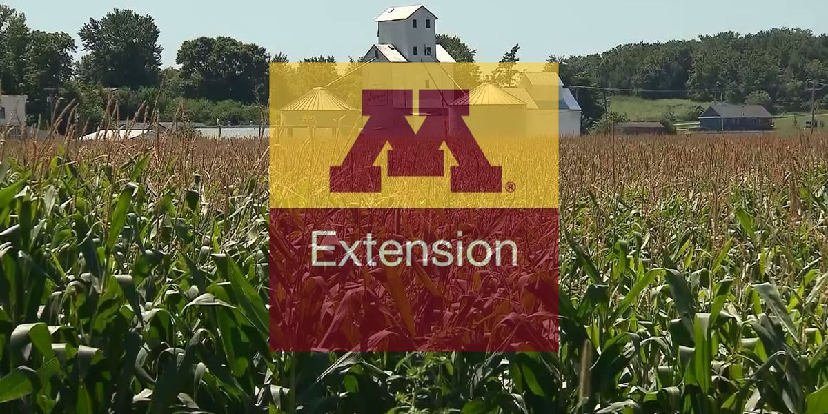 UMN Extension seeking 2019 planting data from farmers