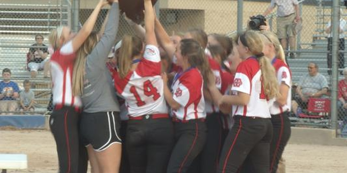 Mankato West tops New Ulm to advance to State
