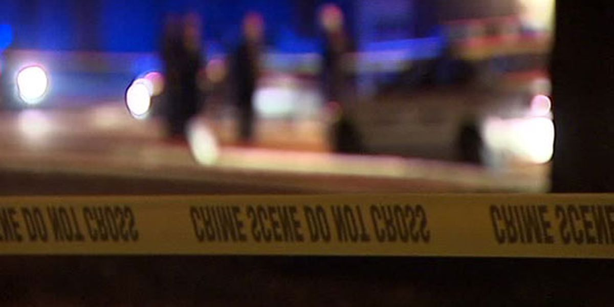 Boy, 3, fatally shot himself in the face by accident, police say