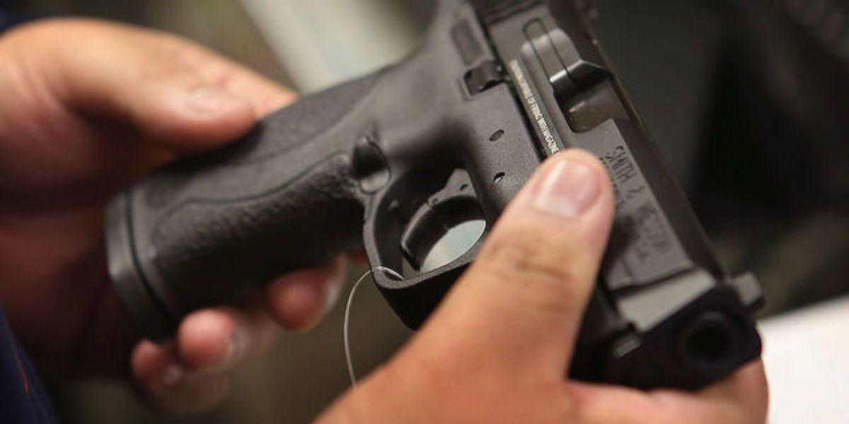 Iron Range city of Hibbing debates gun control bills