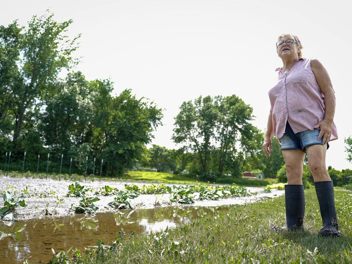 Flash flooding damages Valley Veggies and Flowers