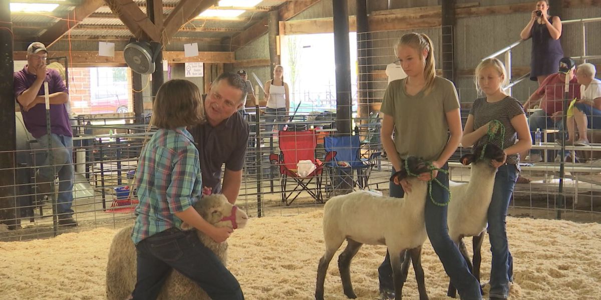 Minnesota Youth Livestock Expo offers new show opportunity for Minnesota youth