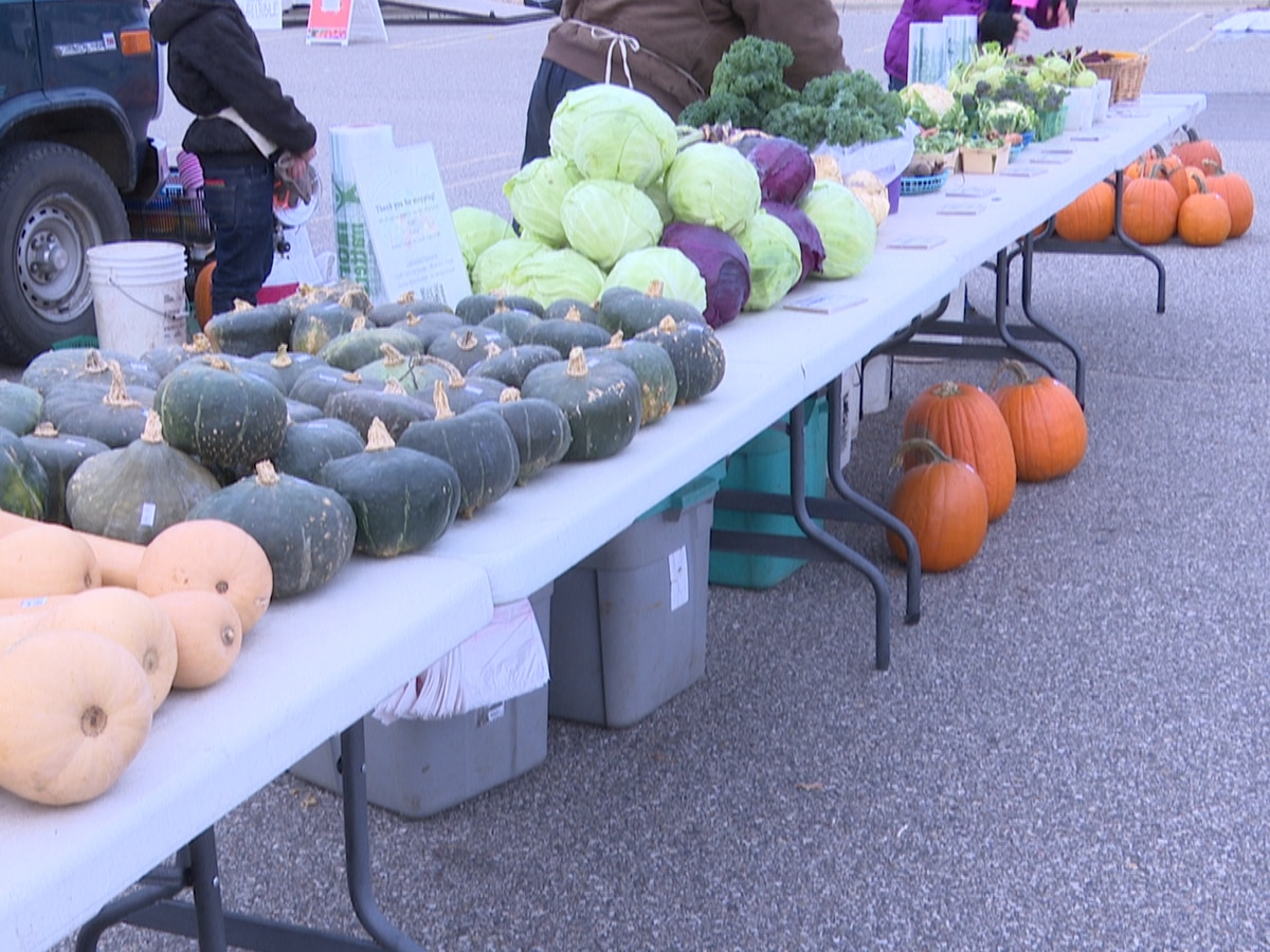 Mankato Farmers Market adapting to colder weather