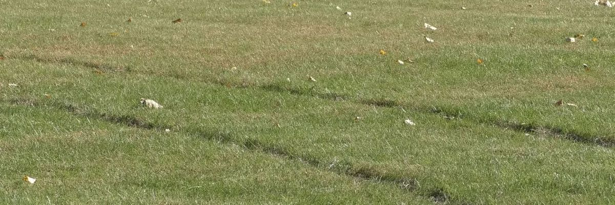 New Ulm United Soccer Club searching for answers after field vandalism