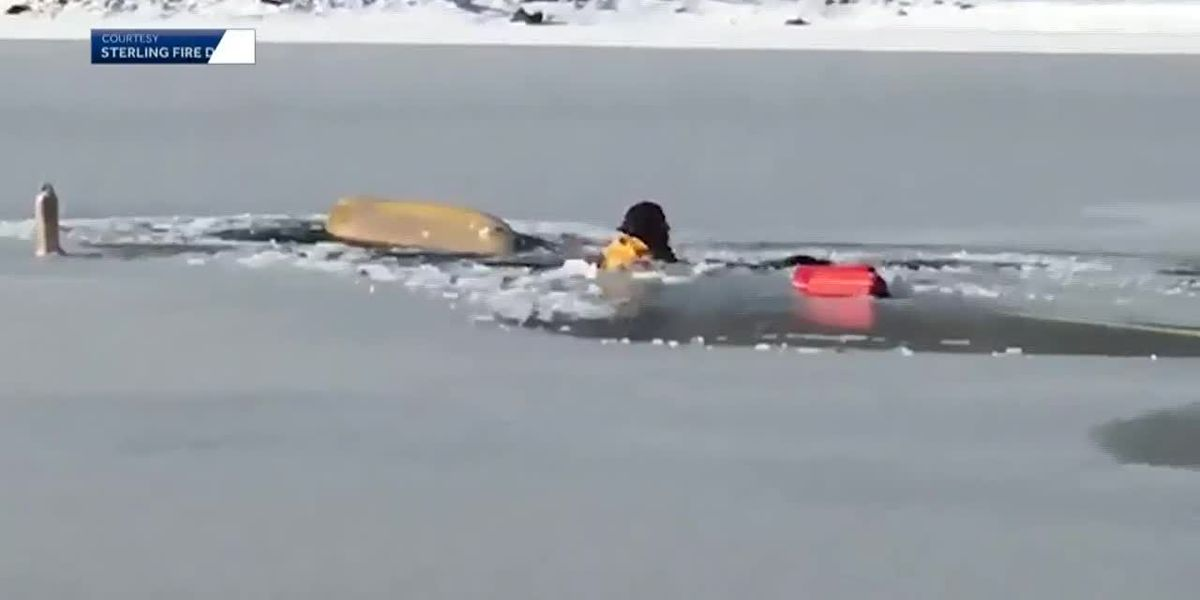 Man, dog rescued after falling through ice