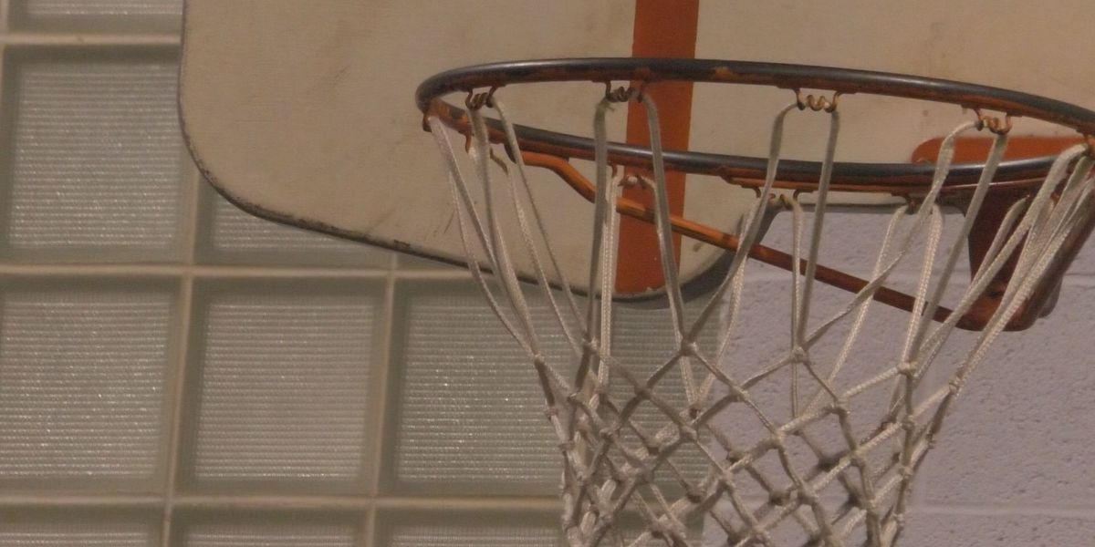 Timberwolves, Lynx players teach Mankato Youth Place kids skills both on and off the court