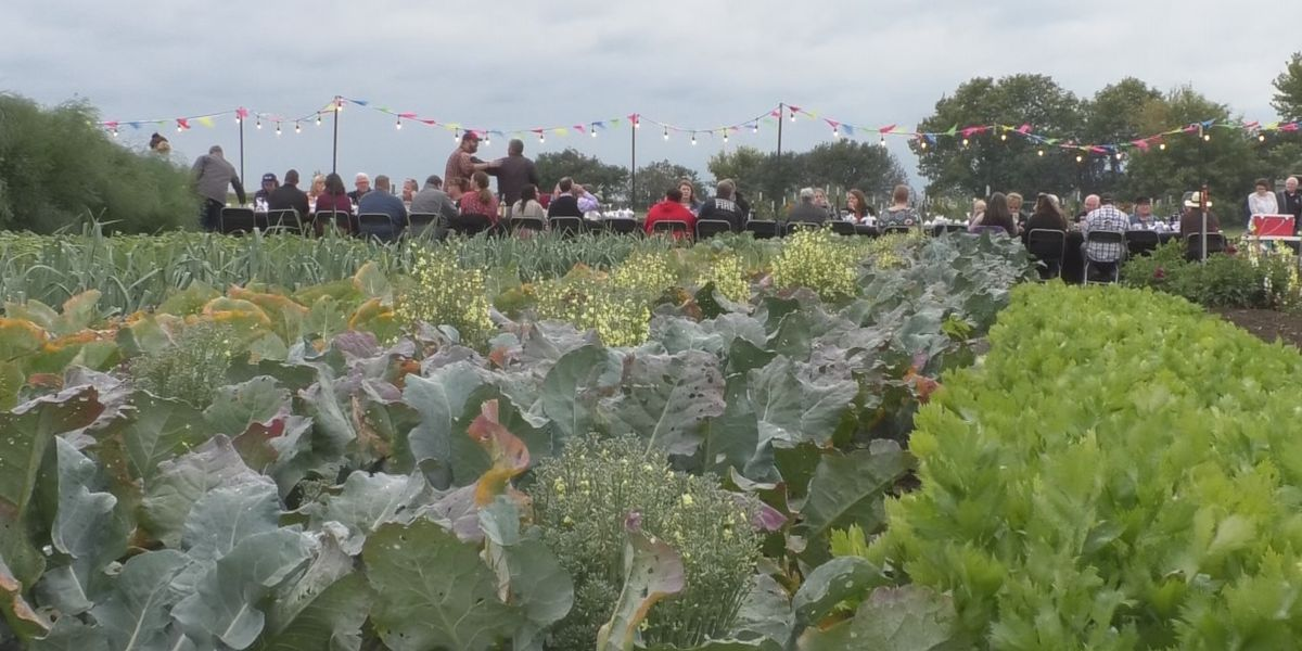 People enjoy locally grown and raised food at farm fest