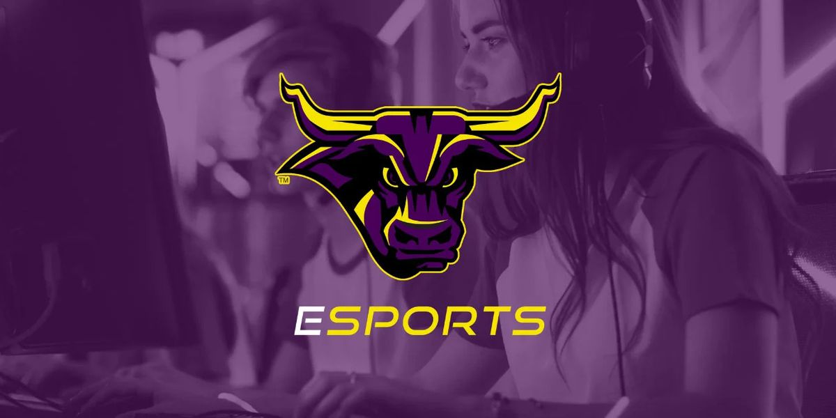 Minnesota State Mankato to launch varsity esports team in spring 2021