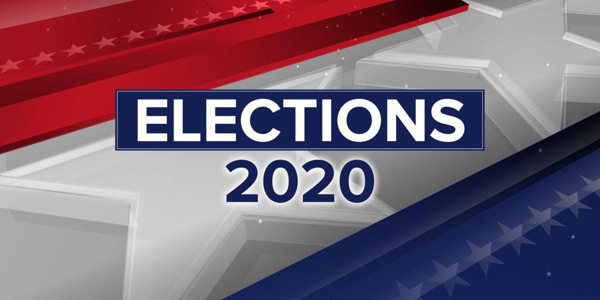 Suburban voters hold key to control of Minnesota Senate