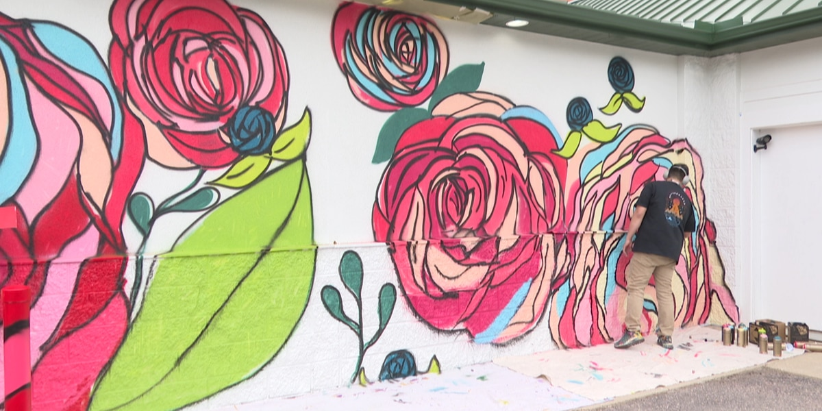 New outdoor mural completed in Lower North Mankato