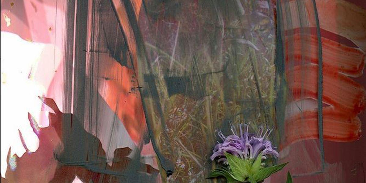 Minnesota State University, Mankato presents 'Chrono-flora' by photographer Regan Golden