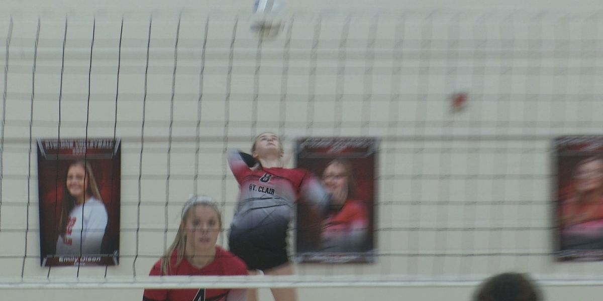 St. Clair tops Mankato Loyola in straight sets