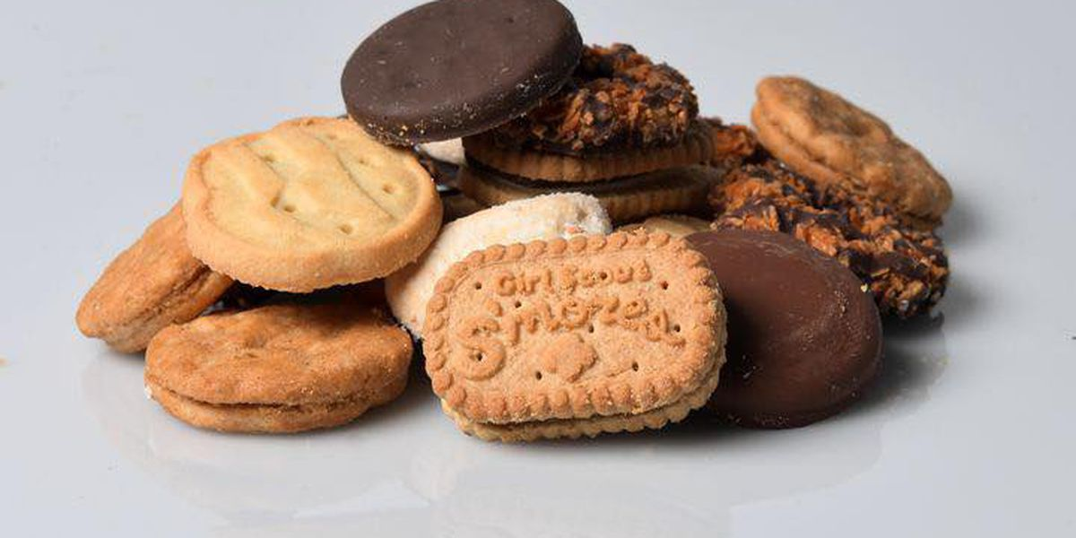 Police: 'Highly addictive' Girl Scout cookies threaten Wis. Community