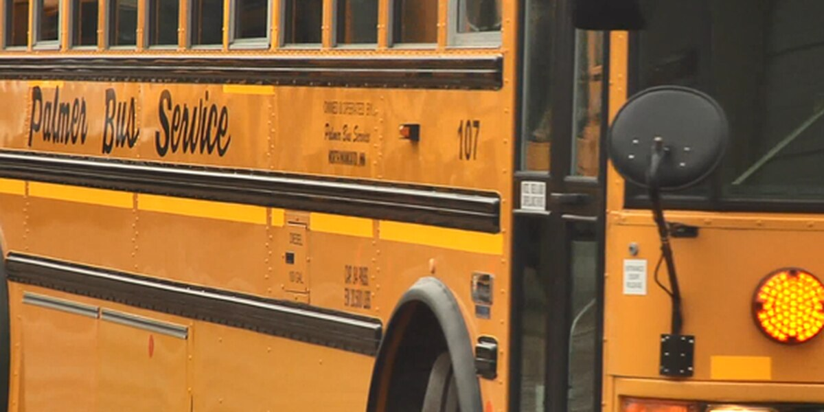 Fight caught on tape prompts concerns about school bus safety