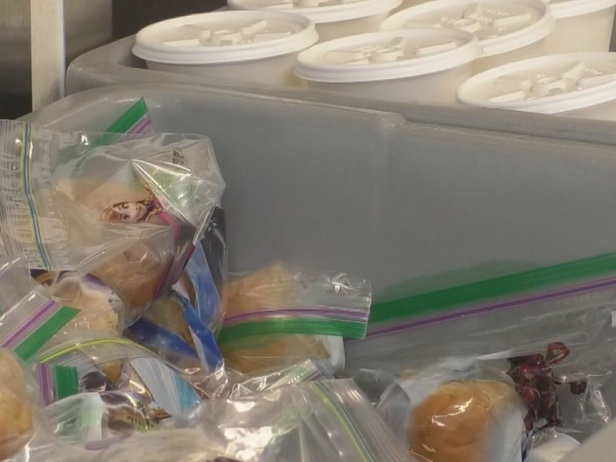 Mankato Area Public Schools extends summer food program to the end of the year