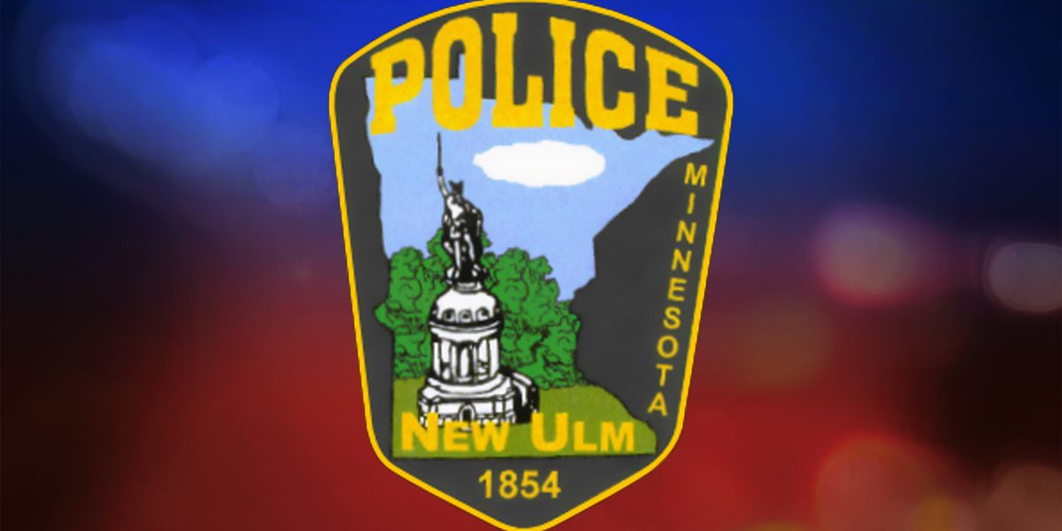 Authorities apprehend man suspected of unprovoked assault, vehicle theft