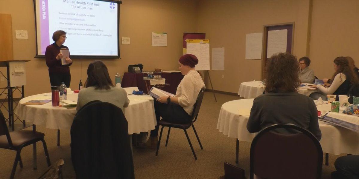 Health experts, legislators look ahead as rural Minnesota feels impacts of mental health care shortage