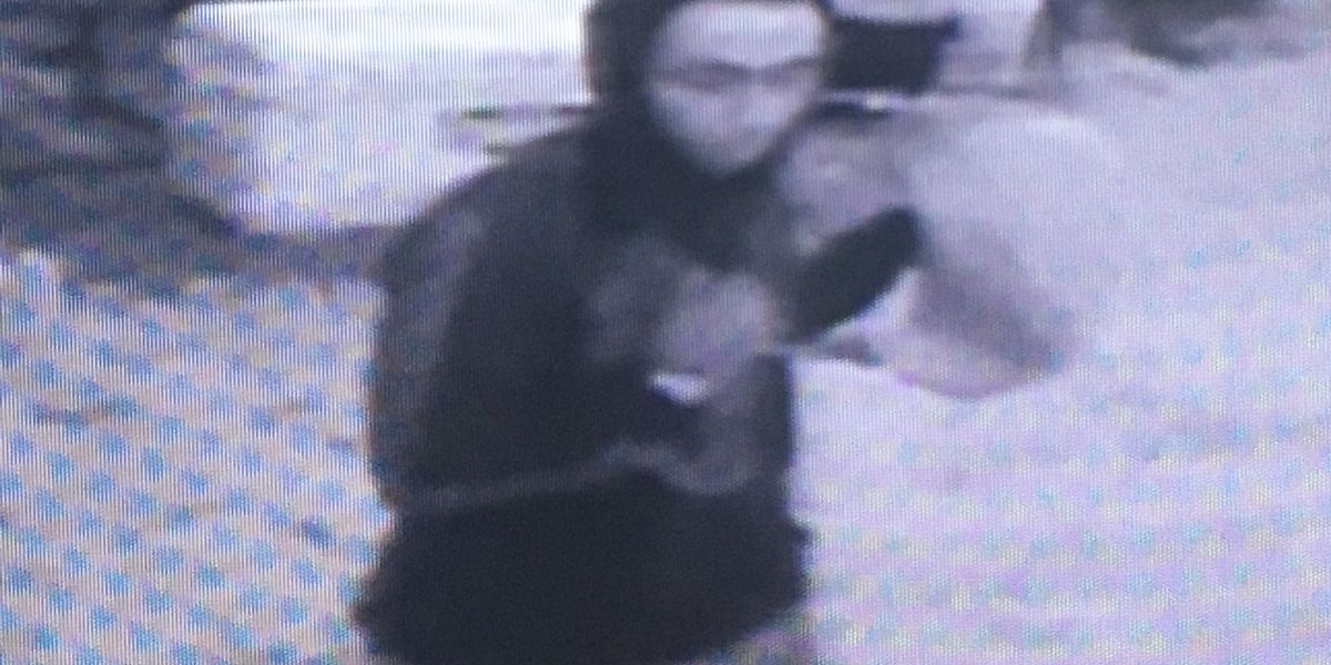 Suspects wanted in vehicle tampering incidents in Mankato